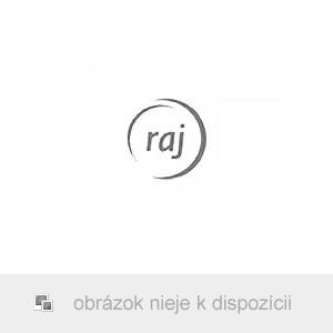 Traxxas Slash 1:10 TQ RTR